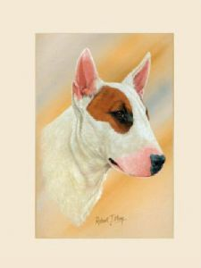 Original Bull Terrier Painting